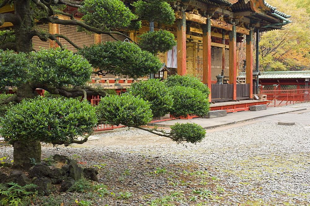 Ueno Toshogu Shrine, Tokyo, Central Honshu (Chubu), Japan, Asia