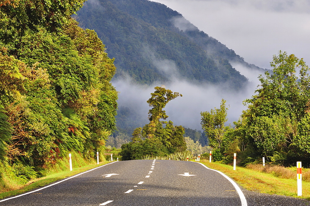 Haast Highway, West Coast, South Island, New Zealand, Pacific