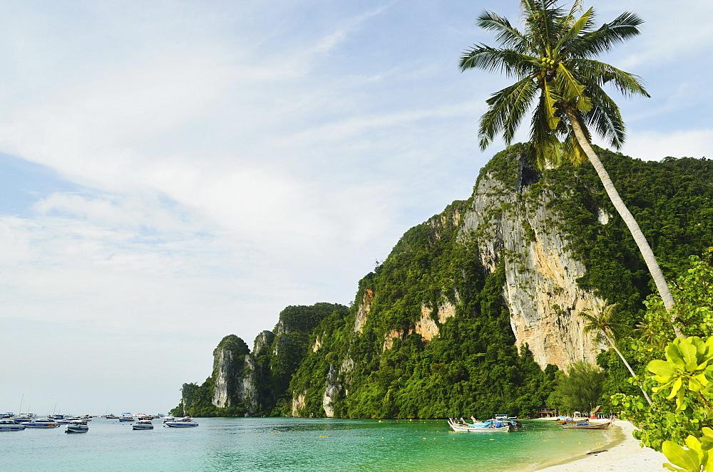 Ton Sai Bay, Ko Phi Phi, Krabi Province, Thailand, Southeast Asia, Asia