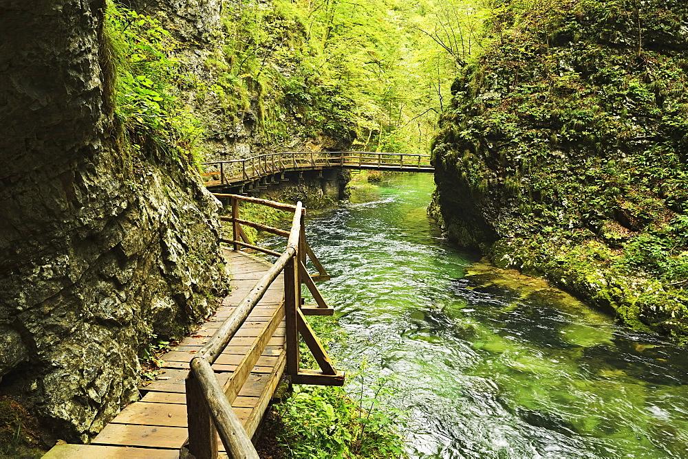 Radovna River, Vintgar Gorge, Gorje, Bled, Slovenia, Europe