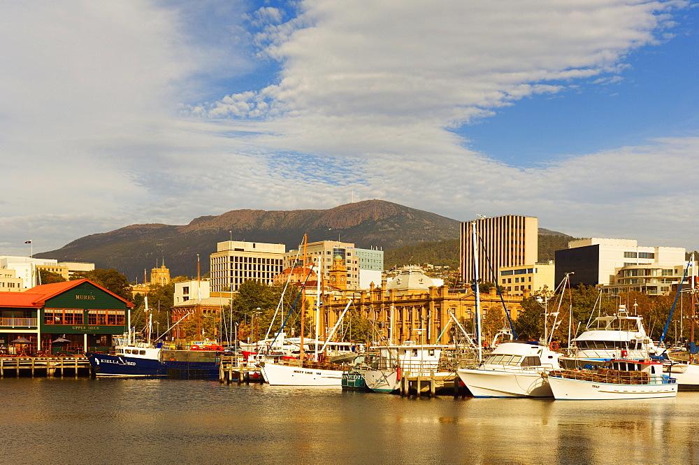 Victoria Dock, Hobart, Tasmania, Australia, Pacific