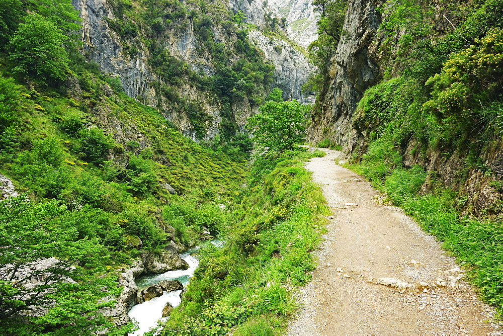 Footpath through the Desfiladero del Rio Cares, Picos de Europa, Parque Nacional de los Picos de Europa, Asturias, Cantabria, Spain, Europe - 756-2826