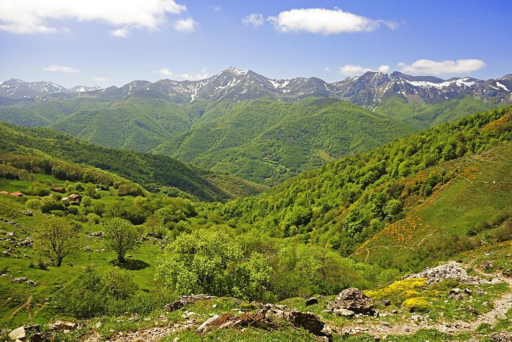 Fuente De, Picos de Europa, Parque Nacional de los Picos de Europa, Asturias, Cantabria, Spain, Europe - 756-2832