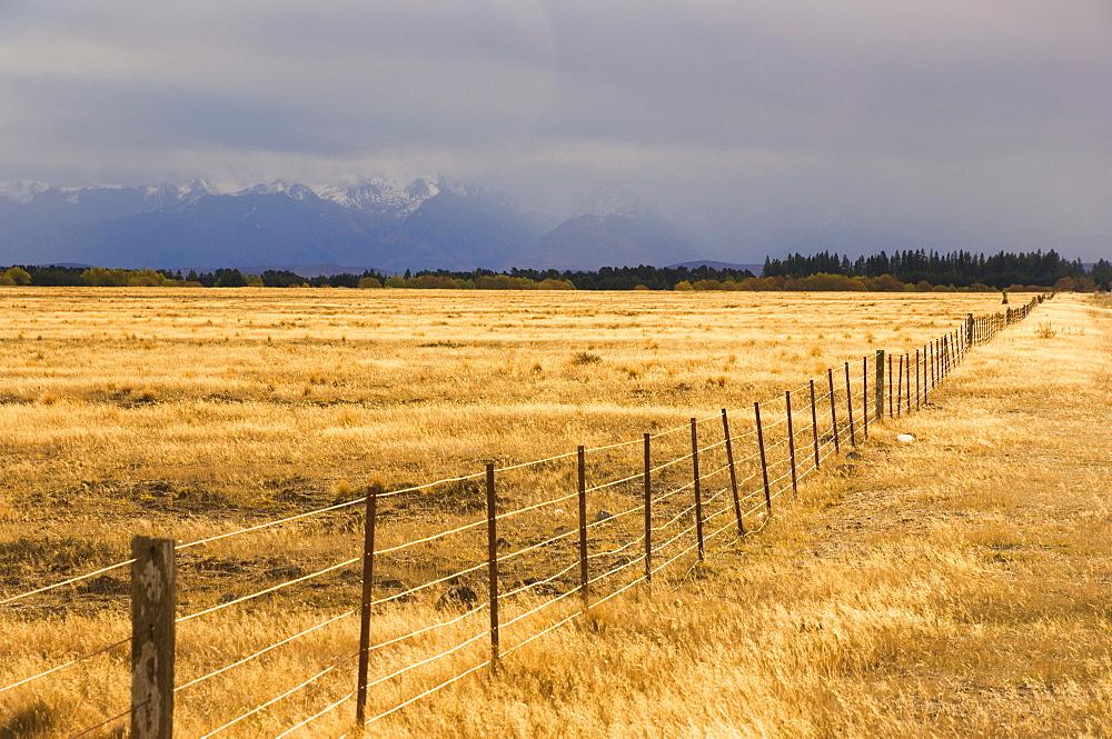 Pasture, Burke Pass, Canterbury, South Island, New Zealand, Pacific