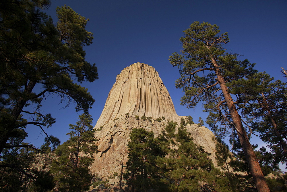 Devils Tower, Devils Tower National Monument, Wyoming, United States of America, North America - 757-284