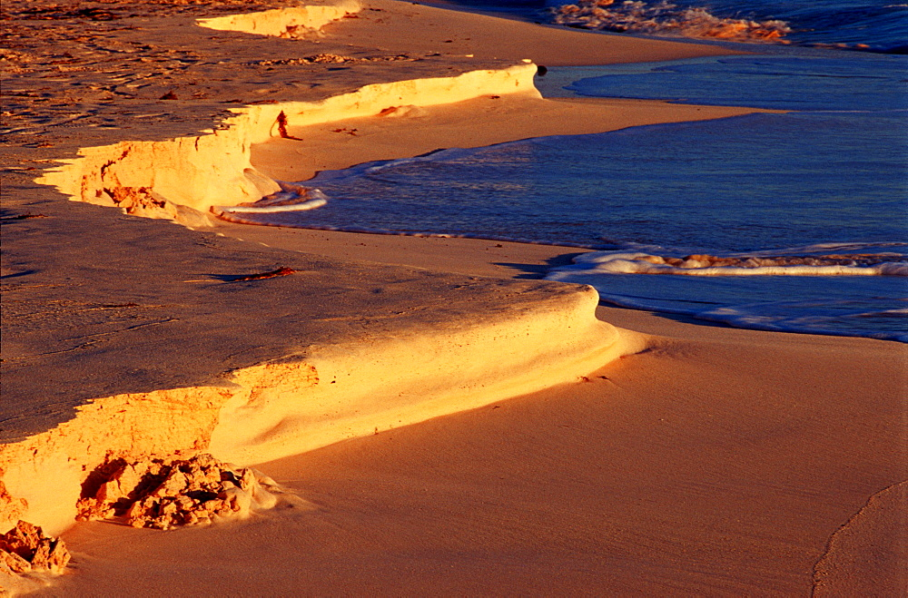Dust on the sand beach, Bahamas, Caribbean Sea, Grand Bahama