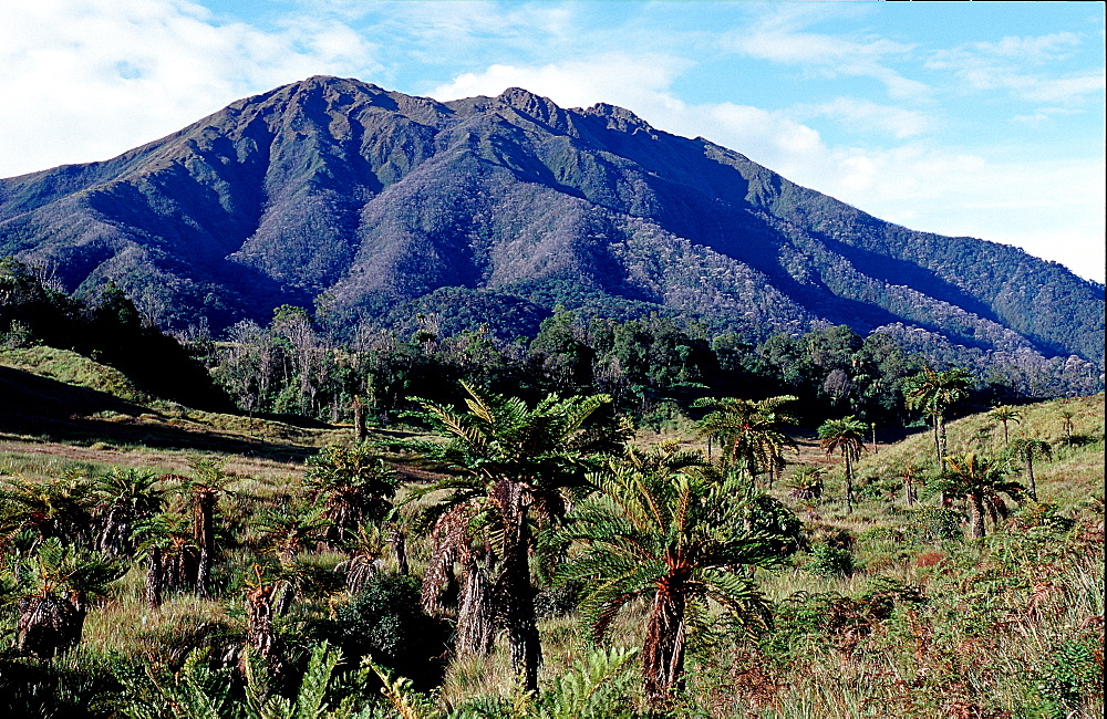 Mount Kerawa, Papua New Guinea, Tari, Huli, Highlands