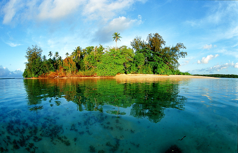 Tropical Island of Papua New Guinea, Lissenung, Papua New Guinea, New Ireland, Neu Irland