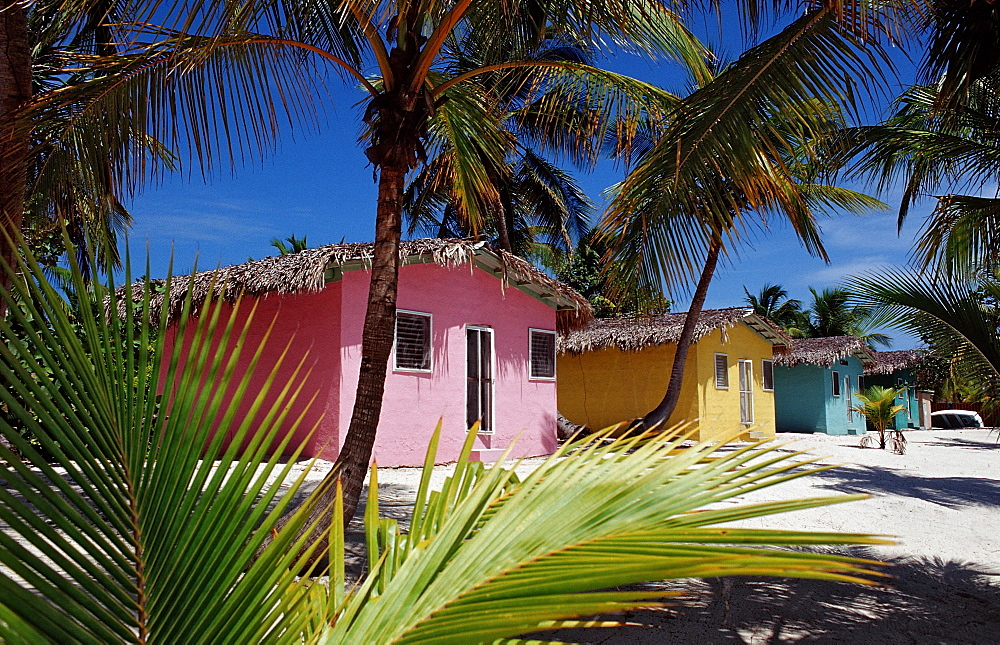 Colorful chalets on the beach, Catalina Island, Dominican Republic, West Indies, Caribbean, Central America