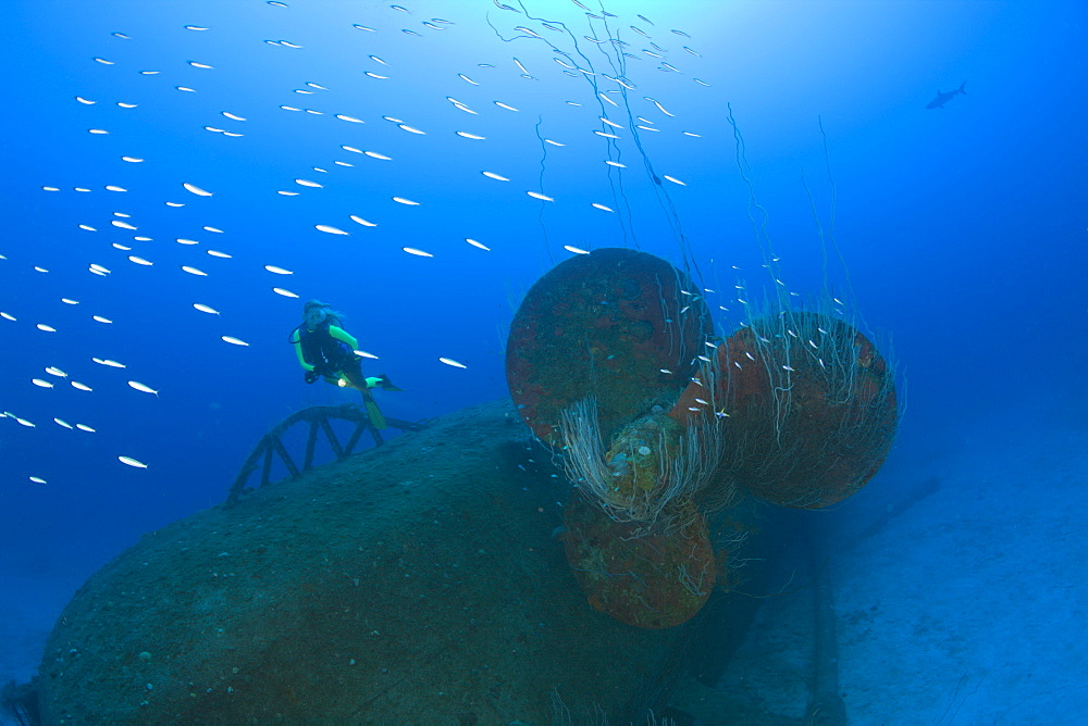 Diver at Propeller of Wreck USS Anderson Destroyer, Marshall Islands, Bikini Atoll, Micronesia, Pacific Ocean