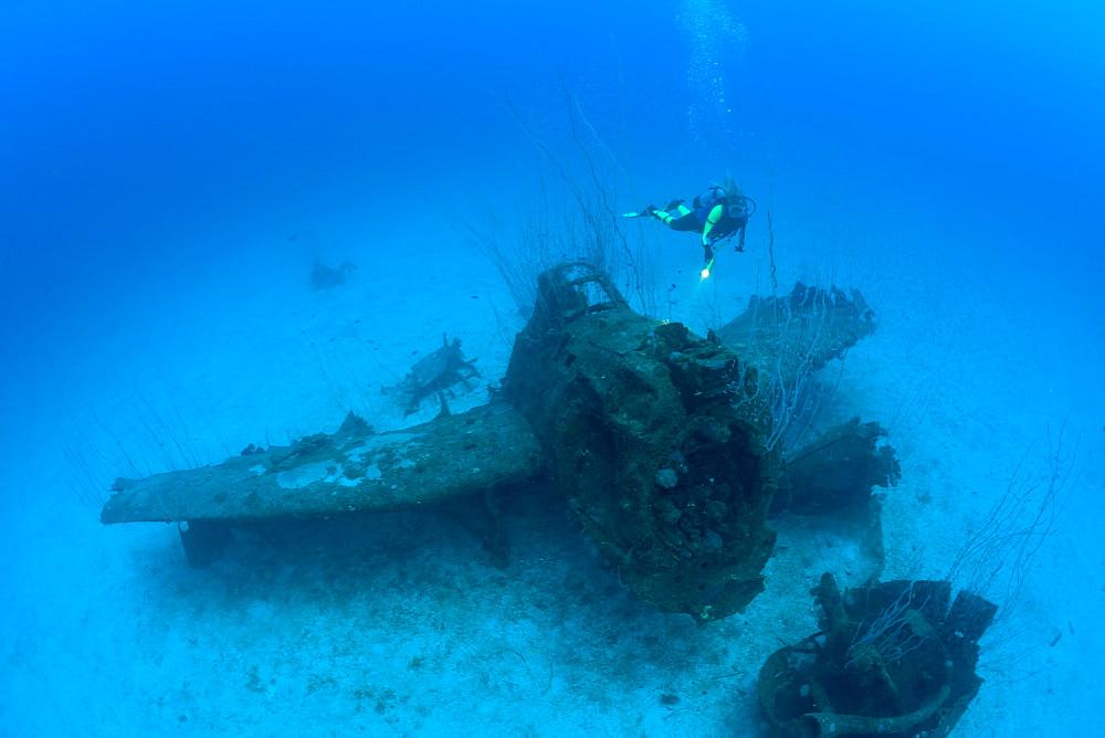 Diver and Bomber on Port Side of USS Saratoga, Marshall Islands, Bikini Atoll, Micronesia, Pacific Ocean