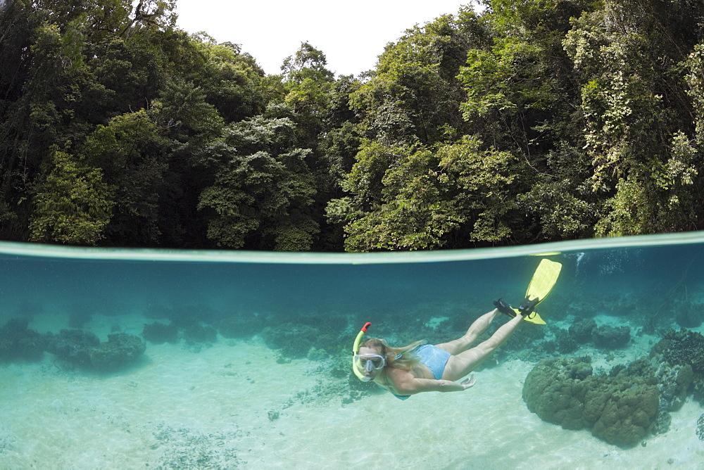Snorkeling at Risong Bay, Risong Bay, Micronesia, Palau