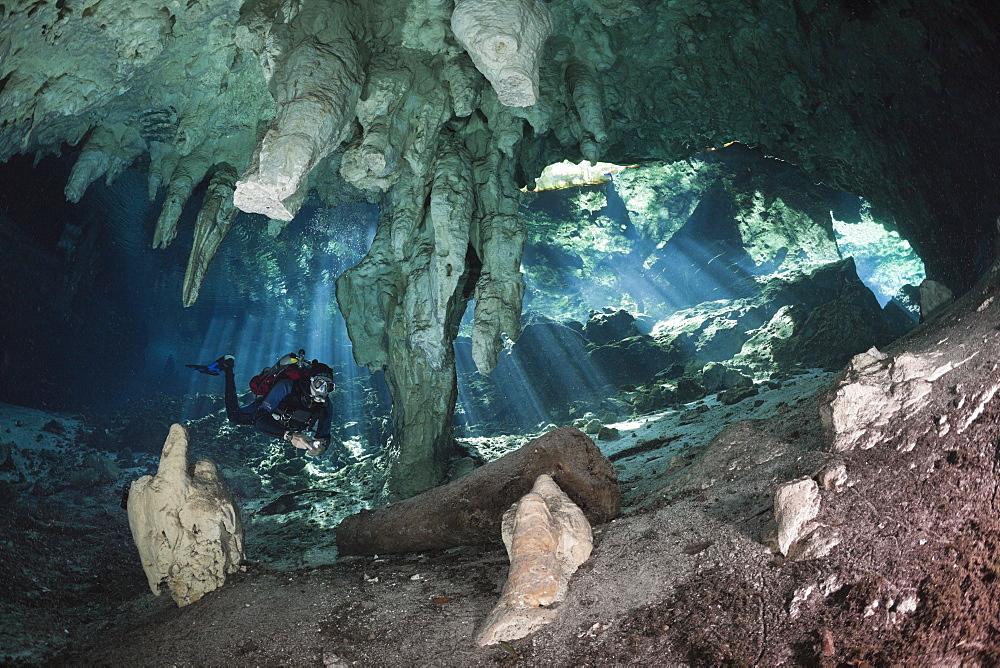 Scuba Diver in Gran Cenote, Tulum, Yucatan Peninsula, Mexico