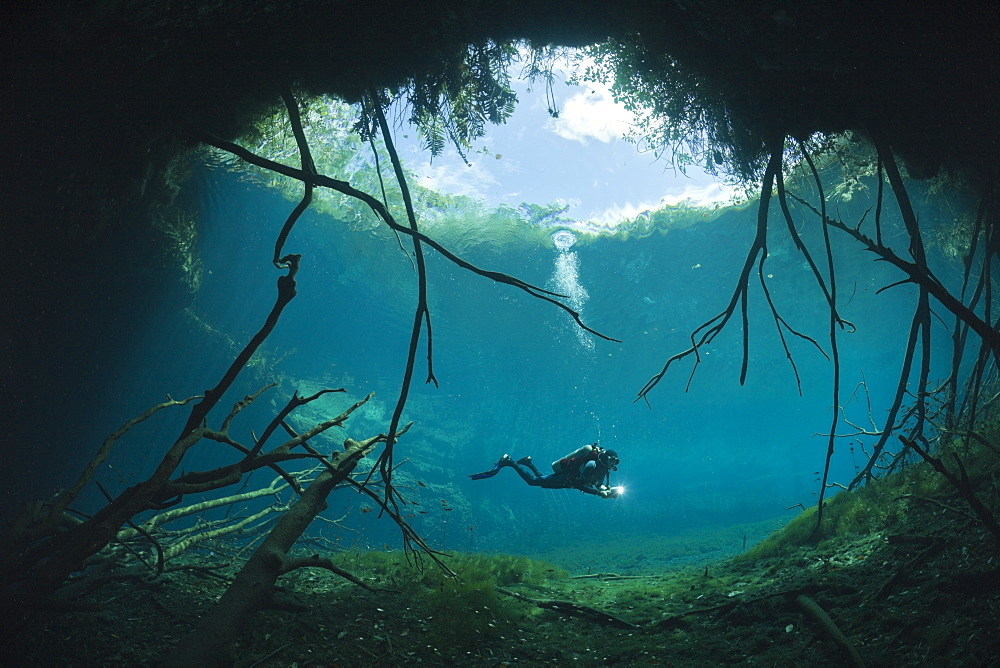 Scuba Diver in Car Wash Cenote Aktun Ha, Tulum, Yucatan Peninsula, Mexico