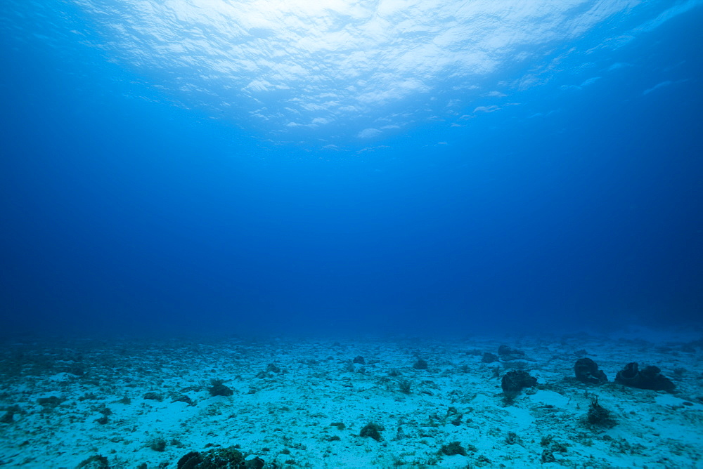 Sandy Bottom and Watersurface, Cozumel, Caribbean Sea, Mexico
