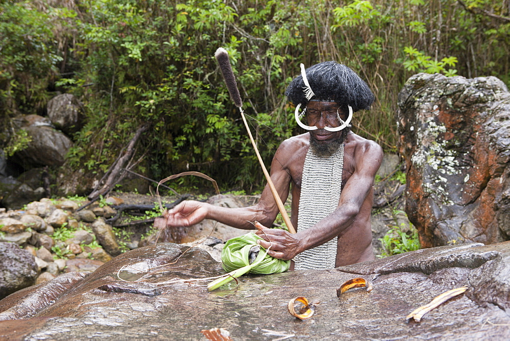 Dani chief showing traditional salt extraction at Jiwika Salt Spring, Baliem Valley, West Papua, Indonesia, Southeast Asia, Asia - 759-9210