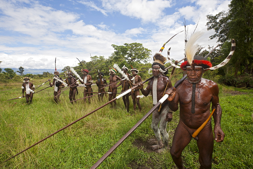 Warriors of Dani tribe, Baliem Valley, West Papua, Indonesia, Southeast Asia, Asia - 759-9264
