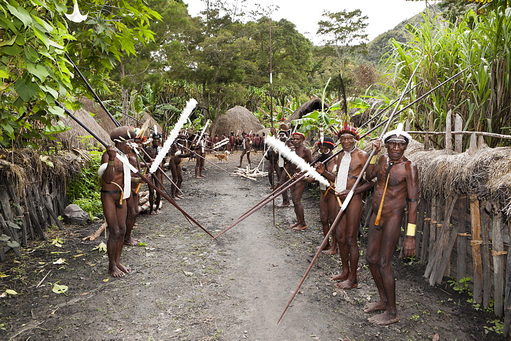 Warriors of Dani tribe, Baliem Valley, West Papua, Indonesia, Southeast Asia, Asia - 759-9266
