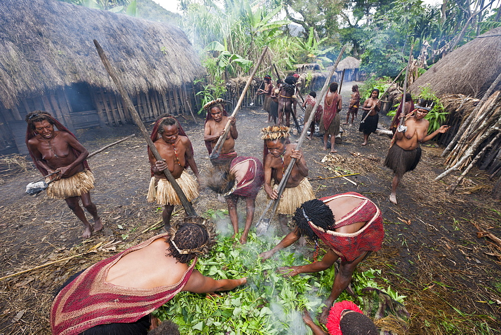 Pig Festival in Dani Village, Baliem Valley, West Papua, Indonesia, Southeast Asia, Asia - 759-9330