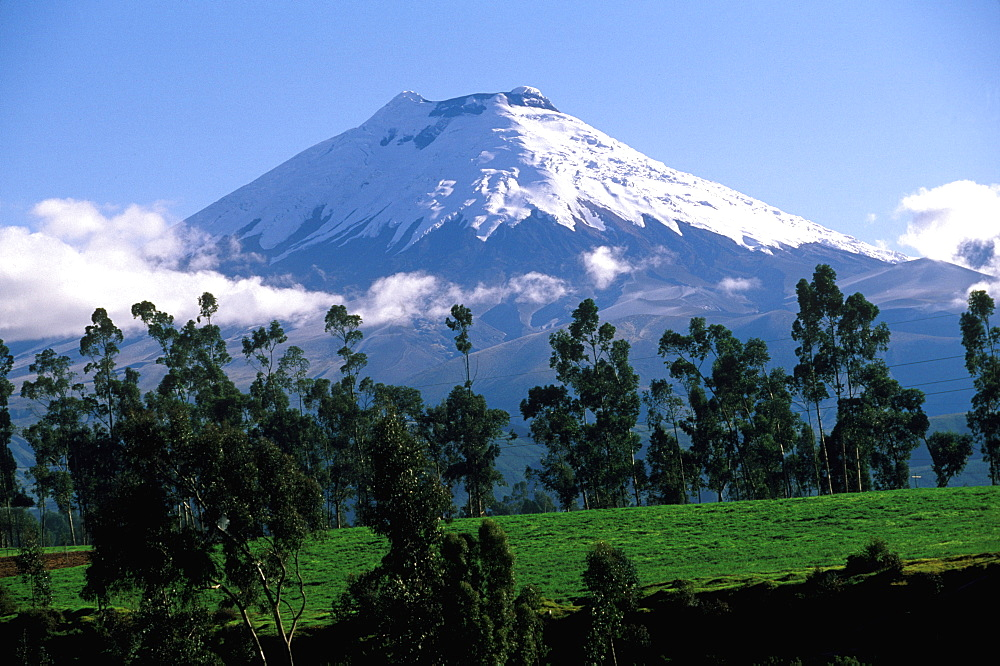 The Avenue of Volcanoes Cotopaxi at 5897 meters is the world's highest active volcano and Ecuador's second highest mountain, Quito, Ecuador