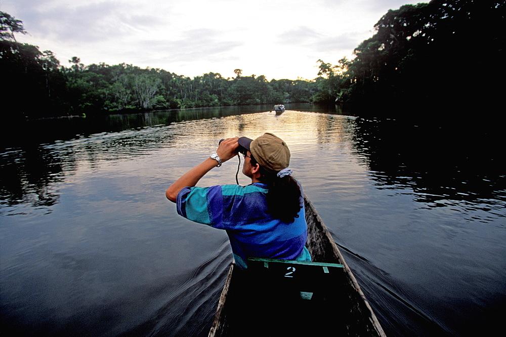 Amazon Basin, Napo River (tributary) La Selva Jungle Lodge, naturalists in dugout canoe on jungle stream in primary rainforest, Amazon, Ecuador - 763-450