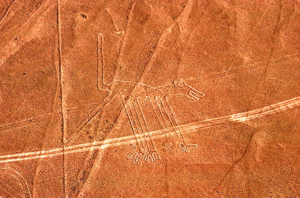 Nazca lines, 200AD-800AD huge drawings in the desert on the south coast of Peru aerial view of a giant dog, Peru
