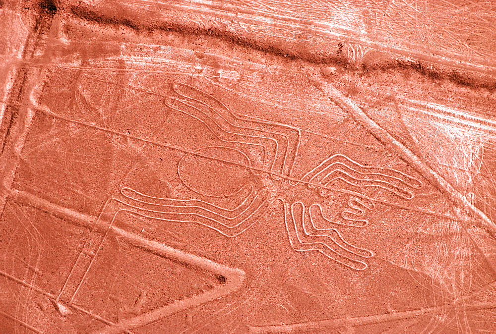 Nazca lines, 200AD-800AD huge drawings in the desert on the south coast of Peru aerial view of giant scorpion spider, Peru