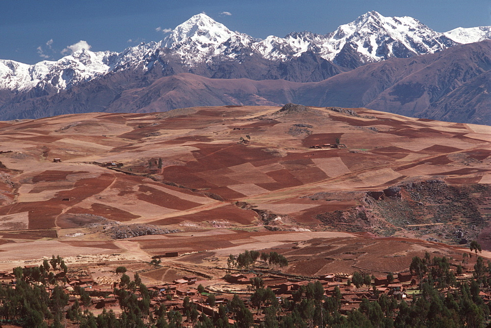 The Cordillera de Urubamba Mtn s above fields at Maras near Cuzco, Andes Mountains, Highlands, Peru