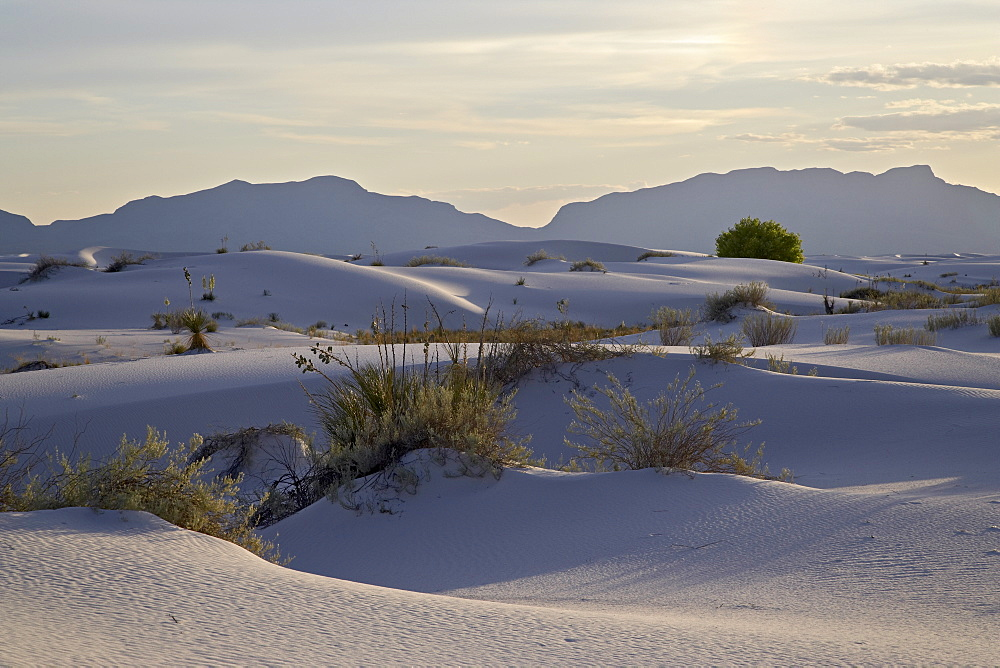 Sand dunes at dusk, White Sands National Monument, New Mexico, United States of America, North America