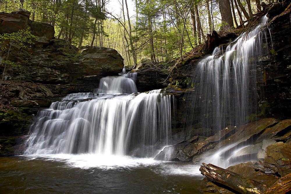 R.B. Ricketts Falls, Ricketts Glenn State Park, Pennsylvania, United States of America, North America