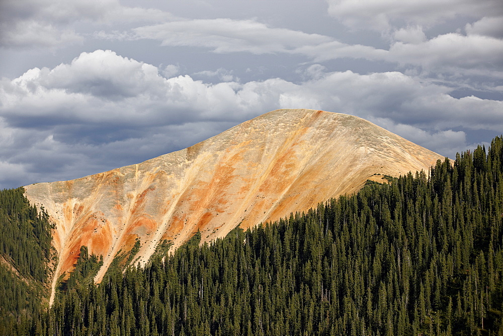 Bear Mountain, San Juan National Forest, Colorado, United States of America, North America - 764-3722