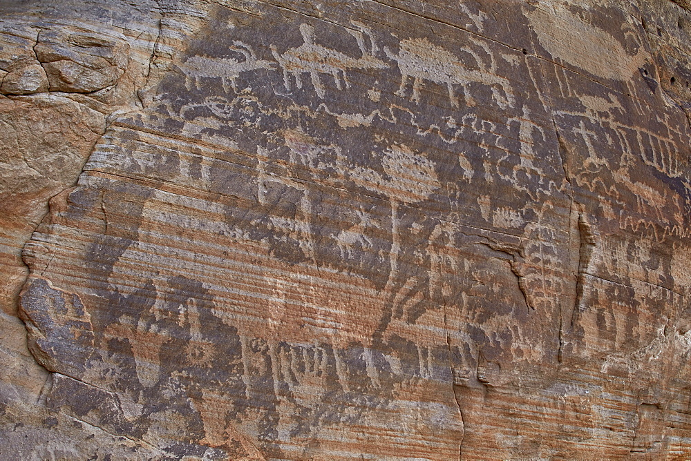 Part of the Kohta Circus petroglyph panel, Gold Butte, Nevada, United States of America, North America