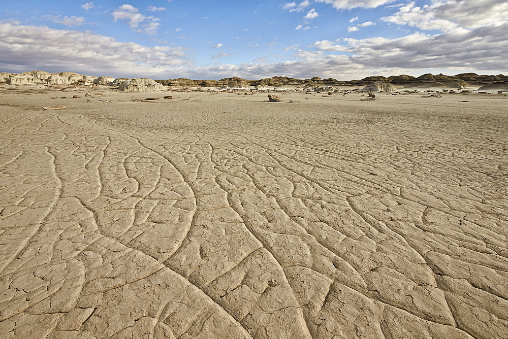 Cracked ground, Bisti Wilderness, New Mexico, United States of America, North America
