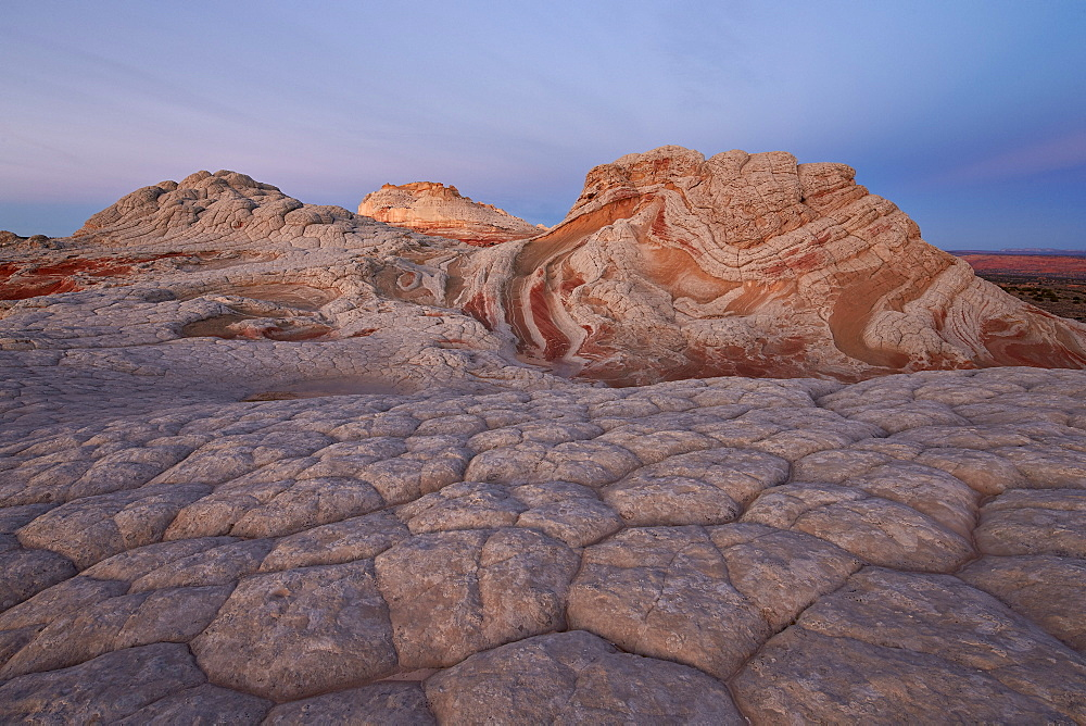 Sandstone brain rock and red and white swirls at dawn, White Pocket, Vermilion Cliffs National Monument, Arizona, United States of America, North America
