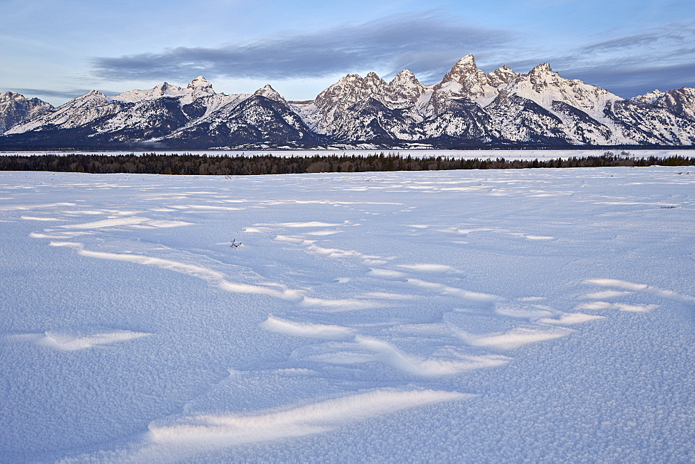 Tetons at dawn in the winter, Grand Teton National Park, Wyoming, United States of America, North America