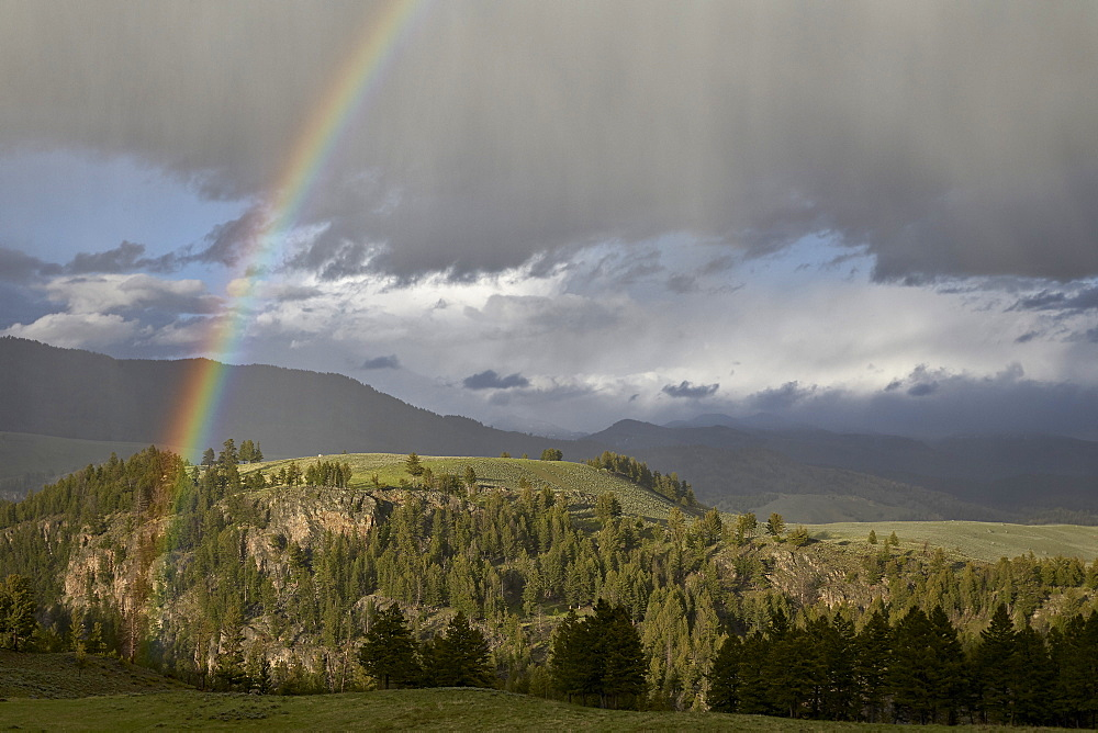 Rainbow, Yellowstone National Park, UNESCO World Heritage Site, Wyoming, United States of America, North America