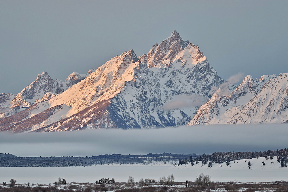 Mount Moran in the winter with snow, Grand Teton National Park, Wyoming, United States of America, North America