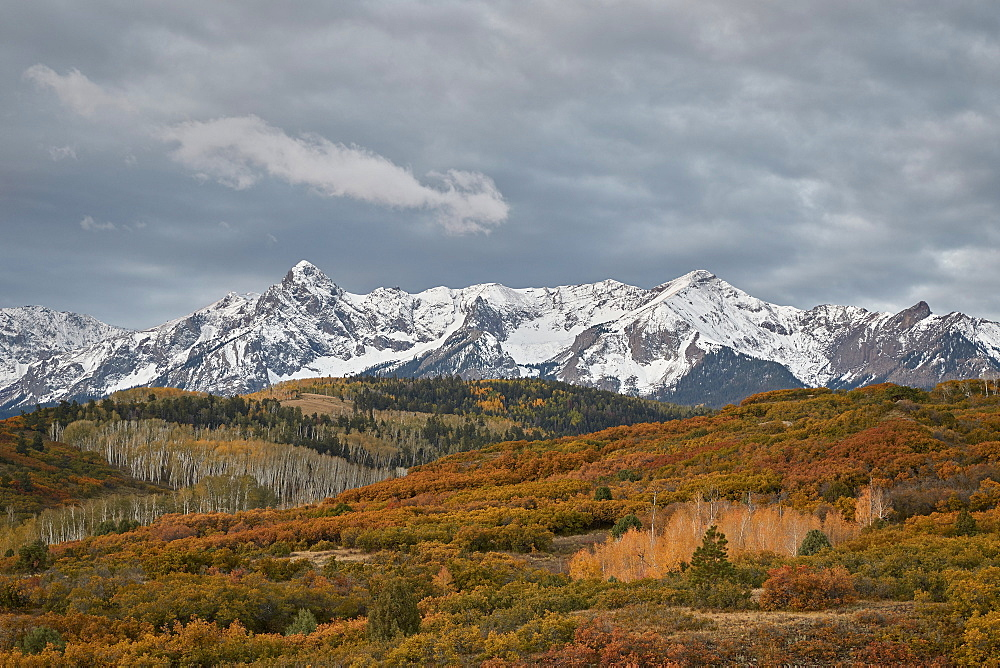 Sneffels Range in the fall, Uncompahgre National Forest, Colorado, USA