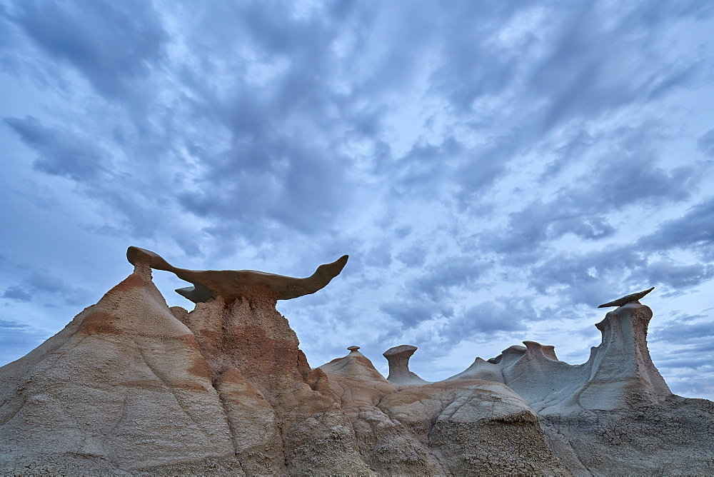 Wings with clouds, Bisti Wilderness, New Mexico, USA