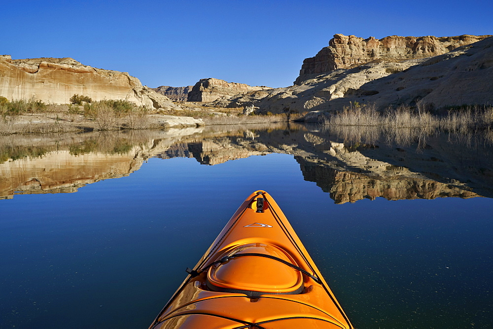 Bluff and stand of bushes reflected in Lake Powell from a kayak, Glen Canyon National Recreation Area, Utah, United States of America, North America - 764-6251