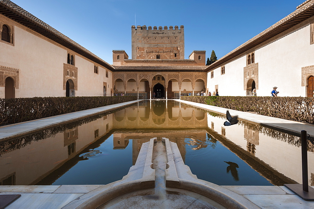 Court of the Myrtles, Alhambra, UNESCO World Heritage Site, Granada, province of Granada, Andalusia, Spain, Europe
