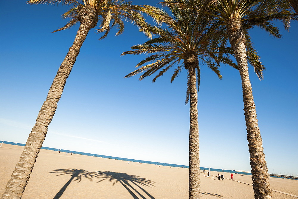 Malvarrosa Beach, Valencia, Spain, Europe