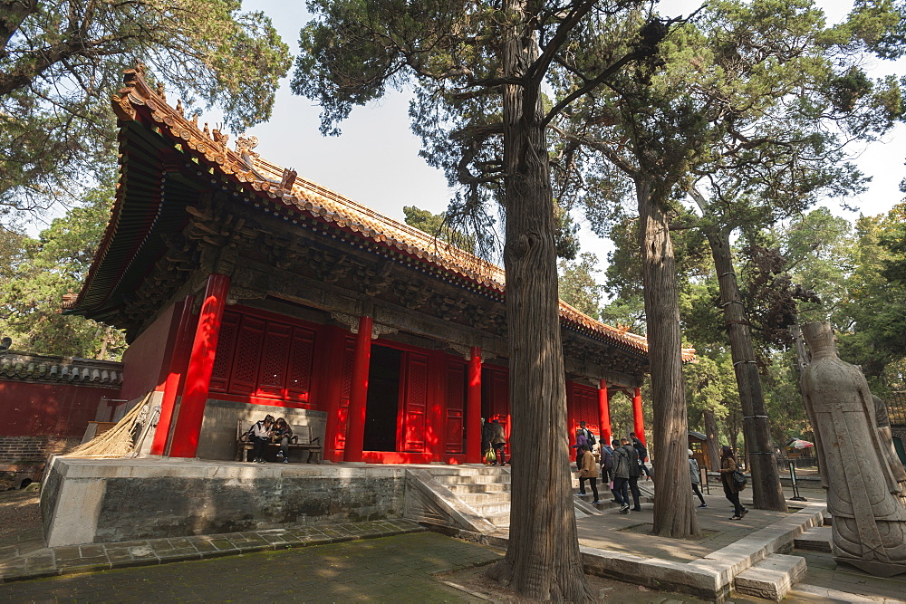 Confucius Forest and Cemetery, Qufu, UNESCO World Heritage Site, Shandong province, China, Asia - 767-1247