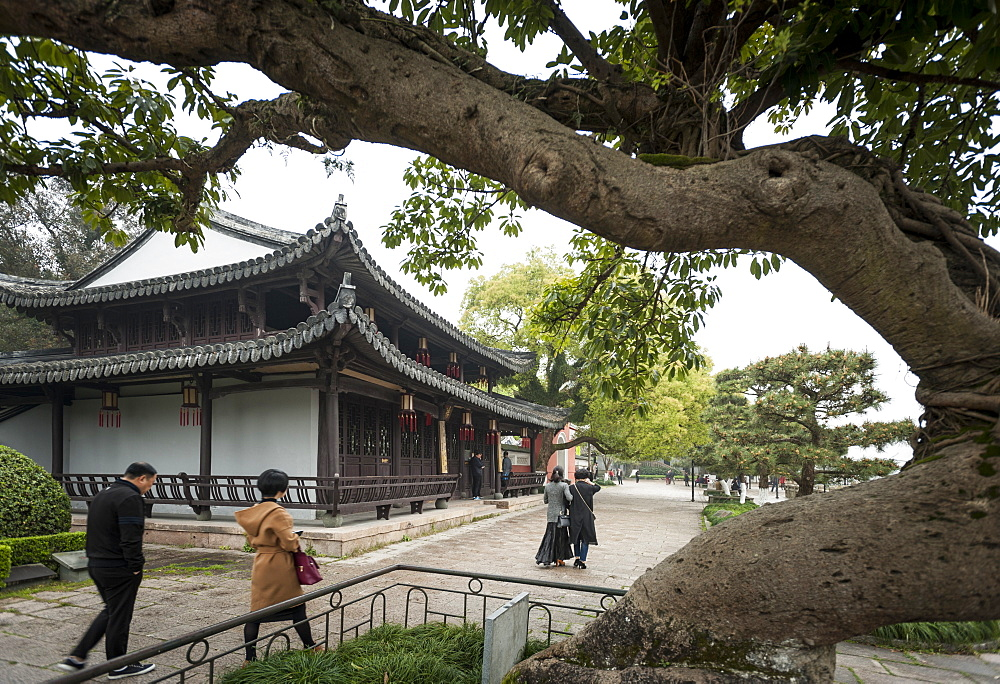 Jiangxin Island, Wenzhou, Zhejiang province, China, Asia - 767-1281
