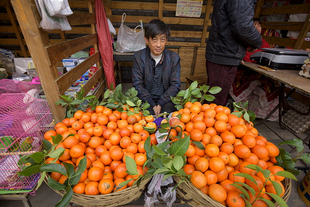 Oranges on fruit stall, Hancheng, Shaanxi Province, China, Asia