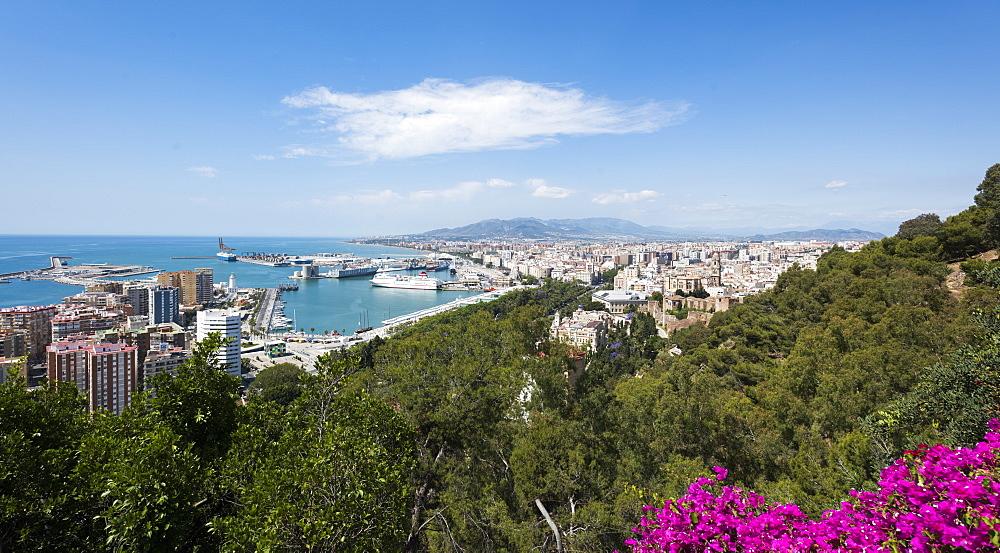 Malaga, province of Malaga, Andalusia, Spain, Europe - 767-1376
