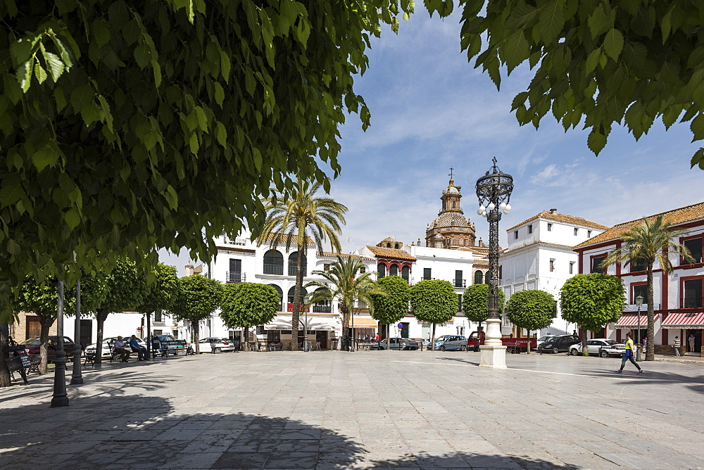 Plaza San Fernando, Carmona, province of Seville, Andalusia, Spain, Europe