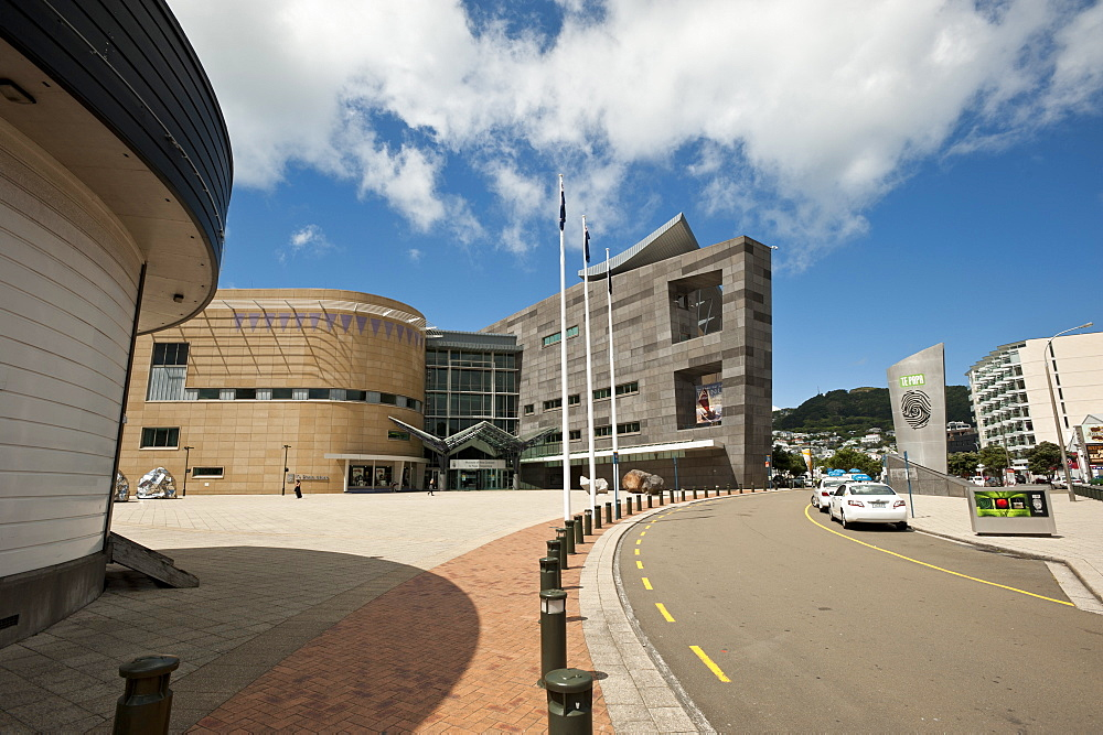Te Papa museum, Wellington, North Island, New Zealand, Pacific