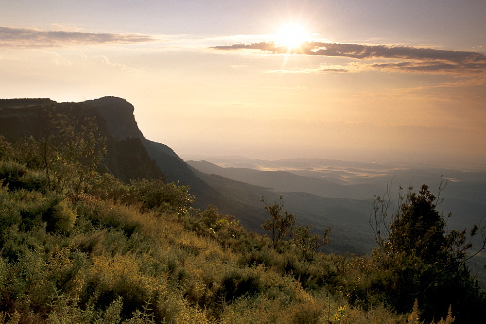 Sunrise over escarpment cliffs near God's Window, near Graskop, along Blyde River Canyon, Mpumalanga, South Africa, Africa - 770-1709