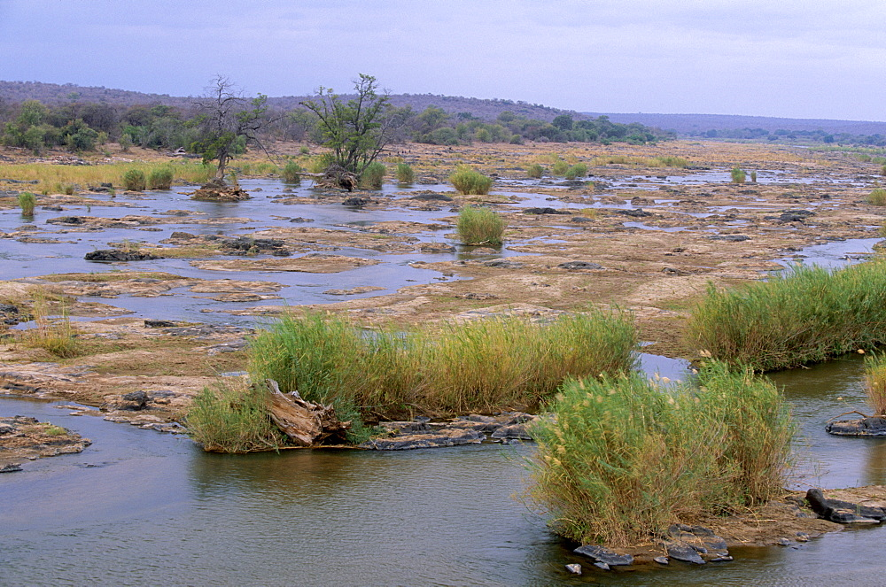 Olifants river, Kruger National Park, South Africa, Africa - 770-1716